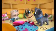 Keia crying puppy dog pals