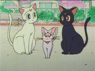 Luna, Artemis, and Diana