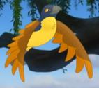 Unknown Bird 1 TLG