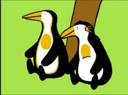 PAZ Penguins