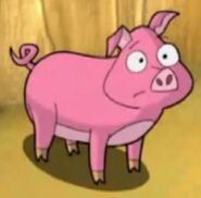 Pig, Domestic (Cyberchase)