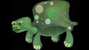 Safari Island Turtle