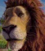 Samson in The Wild