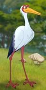 TLG Storks