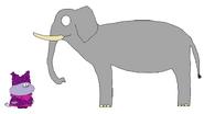 Chowder meets African Bush Elephant