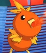 Torchic in Pokemon Jirachi Wish Maker