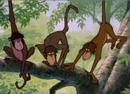 Monkeys-TheJungleBook