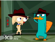 Pinky and Perry