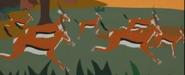 SP Gazelles