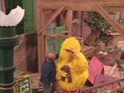 Big Bird is sad because the hurricane tore up his nest