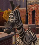Marty in Madagascar