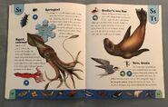 Polar Animals Dictionary (22)