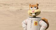 Sandy cheeks is cgi