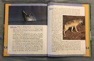 Scholastic Encyclopedia Of Animals (58)
