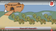 The Tortoises and the Turtles