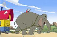 Elephant's Mother