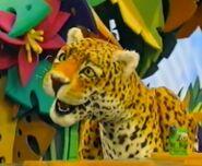 Jasper the Jaguar