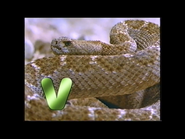 V is for Viper