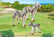 Zebra playmobil