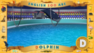 ABC Dolphin