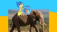 Joy thornberry and dennis thornberry ride elephant