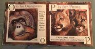 Gary Fleming's Wild Animals ABC (7)