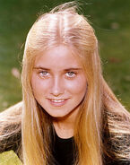 Marcia-Brady-the-brady-bunch-5795502-393-500