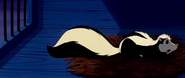 Pandas adventures skunk