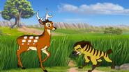 Paraaya ambushing a chital deer by through the movies ddoy765