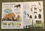 Usborne World Wildlife- Mountain Wildlife (5)