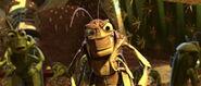 Bugs-life-disneyscreencaps.com-6484