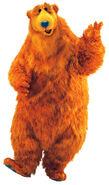 Character bear