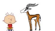 Stanley Griff meets Thomson's Gazelle