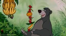 Baloo (The Jungle Book)