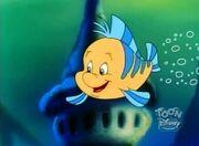 FlounderTLMseries