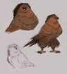 Maui as Eagle