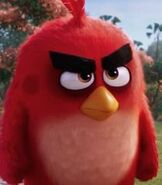 Red in The Angry Birds Movie (2016)