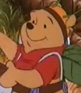 Winnie the Pooh in Boo to You Too Winnie the Pooh