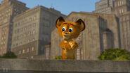 Madagascar baby alex