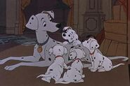 Perdita-101-Dalmatians-disney-classic-era-leading-females-15630692-500-333