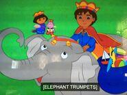 DTE Asian Elephant