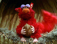 Elmo Squirrel