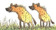 Hyenas 2BP
