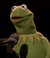 Kermit the Frog in The Voice