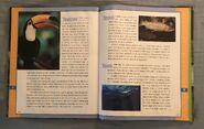Scholastic Encyclopedia Of Animals (55)