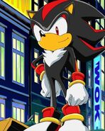 Shadow the Hedgehog in Sonic X