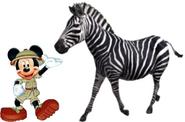 Mickey Meets Plains Zebra