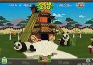 WoZ Pandas.png