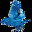 Rio2-Blu-4-icon