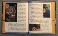 Scholastic Encyclopedia Of Animals (37)
